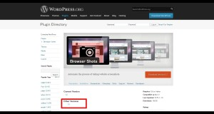 WordPress › Browser Shotss