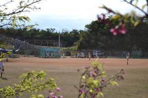 28八重瀬公園_頂上_桜に囲まれて野球