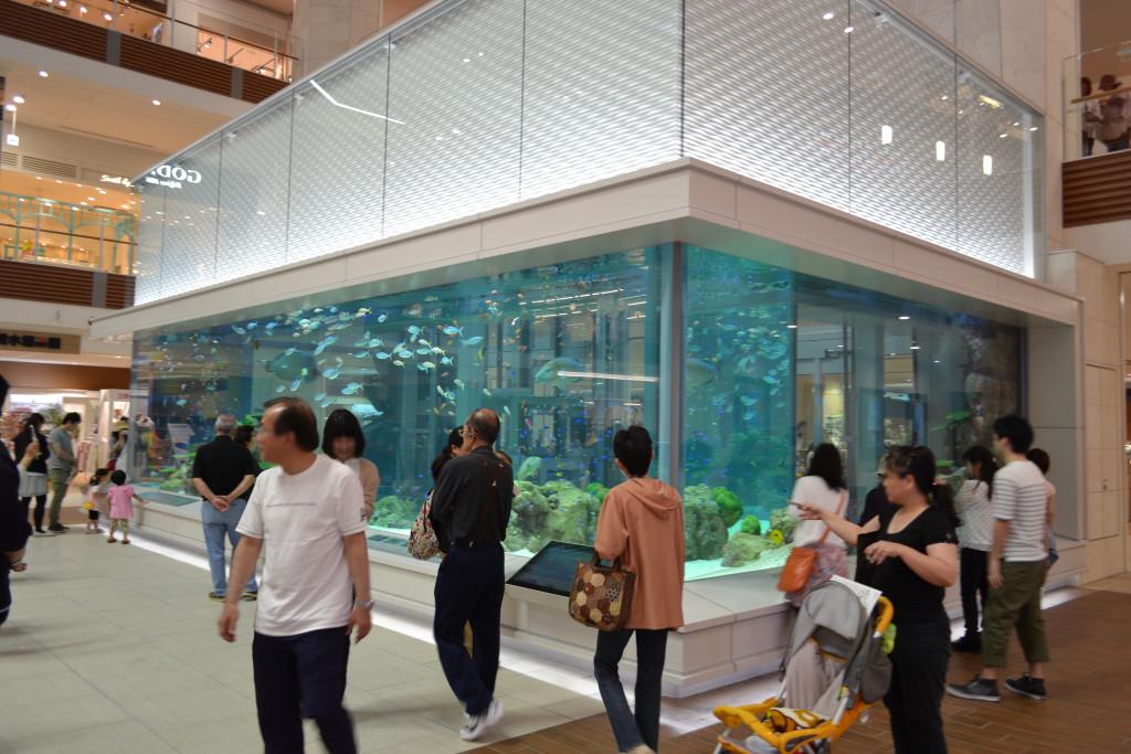 230_イオンモール沖縄ライカム 1階 水槽